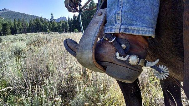 cowboy-2243027__340