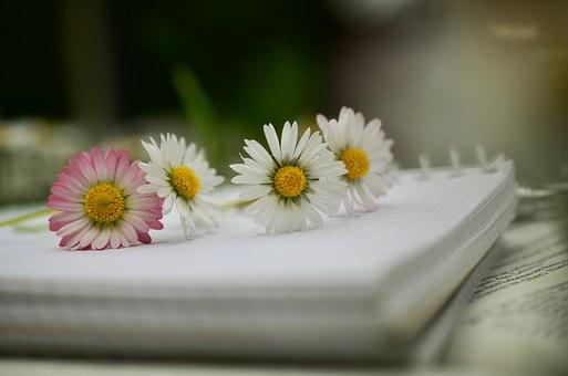 notebook-1405306__340