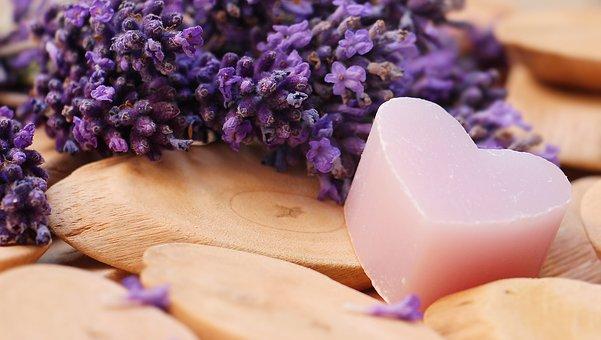 lavender-2443220__340