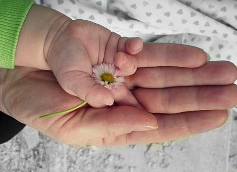 hands-105455__340